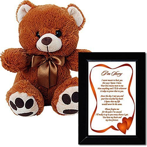 I'm Sorry Love Poem and Plush Teddy Bear