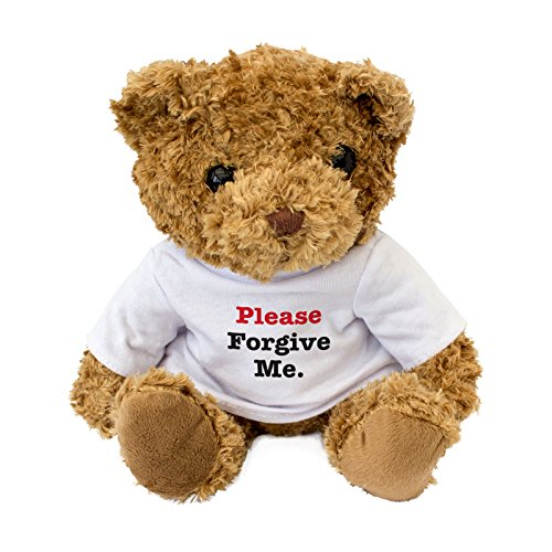 Please Forgive Me - Cute And Cuddly Teddy Bear